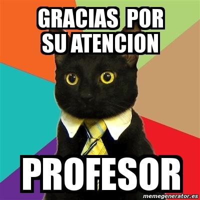 Meme Business Cat - gracias por su atencion profesor - 194543