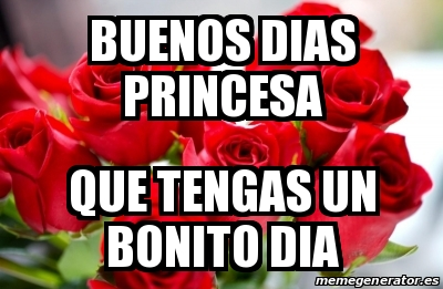 Meme Personalizado - Buenos Dias princesa que tengas un ...
