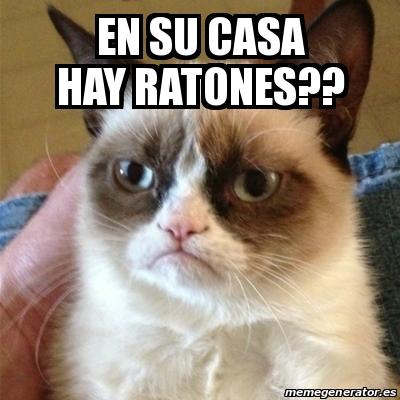 Meme grumpy cat en su casa hay ratones 18705174 - Ratones en casa eliminar ...