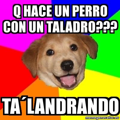 Meme Advice Dog - q hace un perro con un taladro??? ta...
