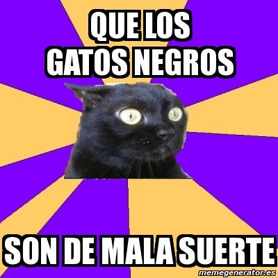 Meme anxiety cat que los gatos negros son de mala suerte - Los peces traen mala suerte ...