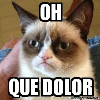 meme grumpy cat   oh que dolor   3289201