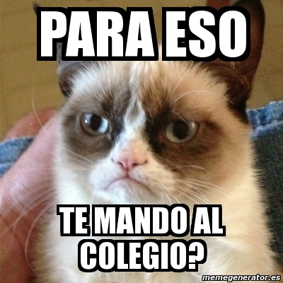 meme grumpy cat   para eso te mando al colegio   4329732