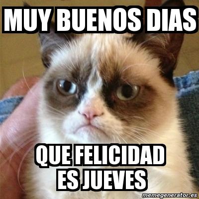 meme grumpy cat   muy buenos dias que felicidad es jueves