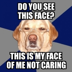 Meme Perro Racista - DO YOU SEE THIS FACE? THIS IS MY FACE ...